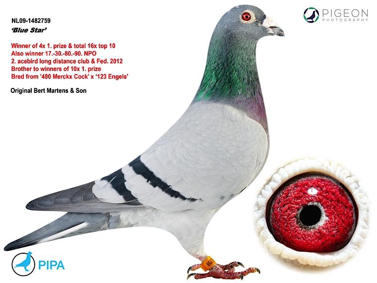 NL09-1482759
