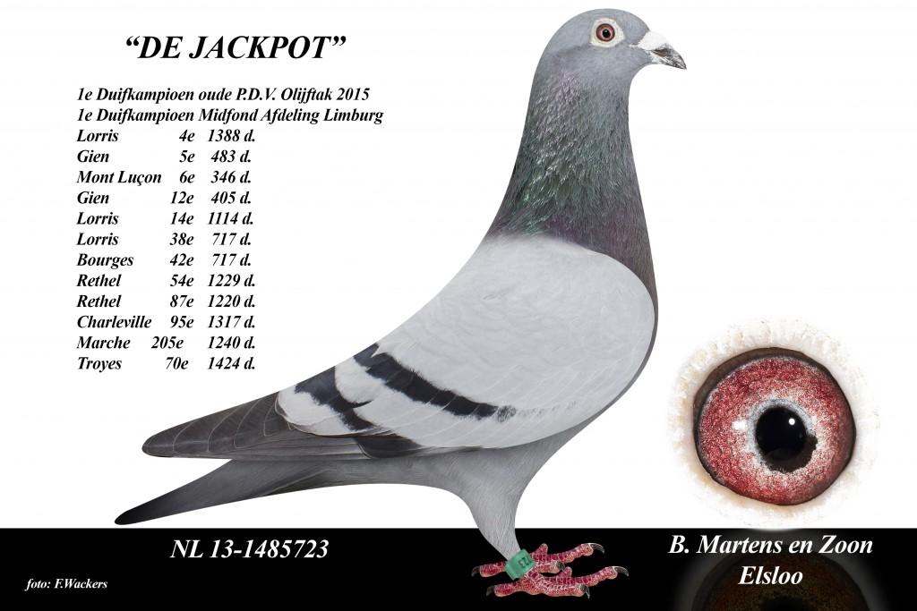 NL13-1485723 de jackpot