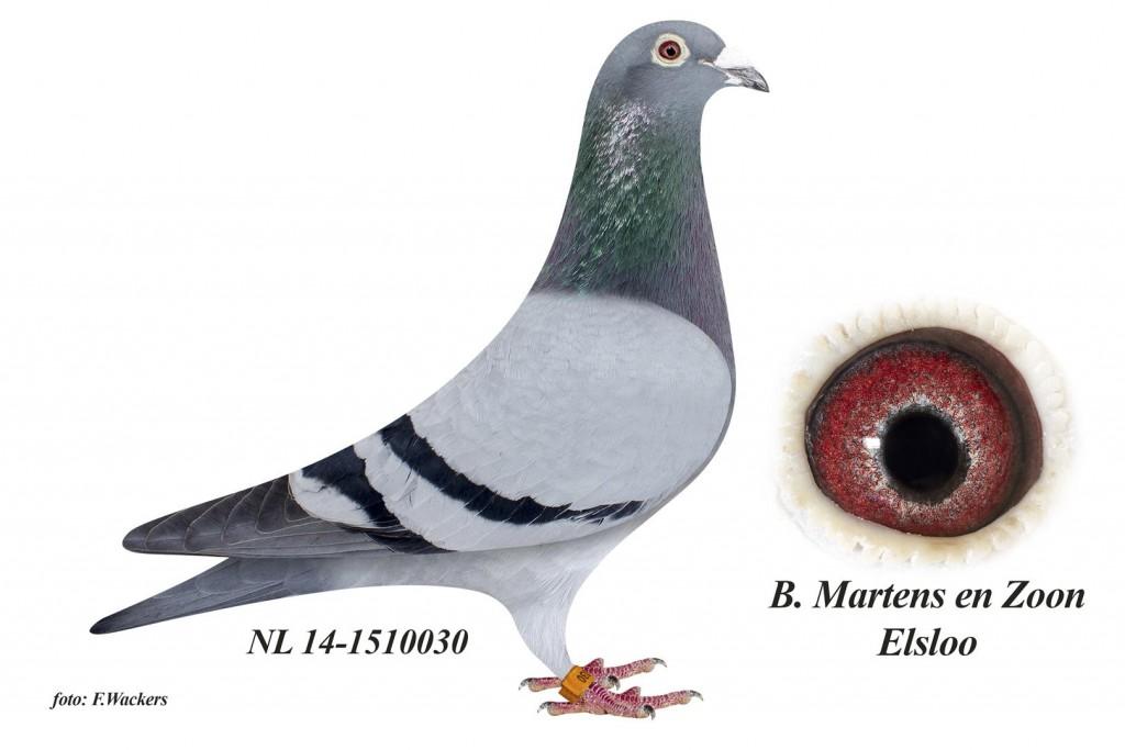 NL14-1510030
